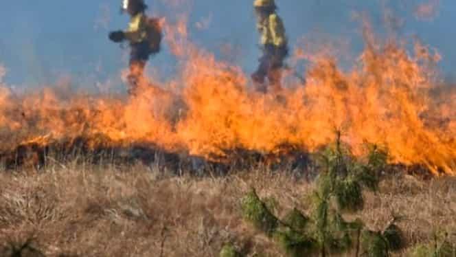Incendiu violent la marginea Bucureştiului. Groapa de gunoi Glina este cuprinsă de flăcări uriaşe
