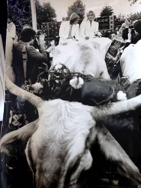 """Björn Borg, """"iceborgul"""" dezgheţat de Mariana Simionescu, nunta secolului şi… carul cu boi!"""