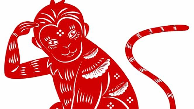 Zodiac chinezesc pentru luna mai 2021. Maimuțele renasc din propria cenușă