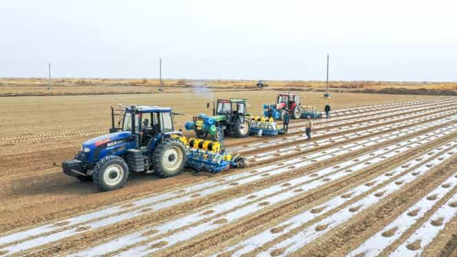 Veste bună pentru românii care muncesc în Italia, în agricultură. Decizie oficială