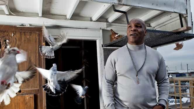 """Mike Tyson a vrut să se bată cu o gorilă: """"Dădeam 10.000 de dolari să intru în cuşcă"""""""