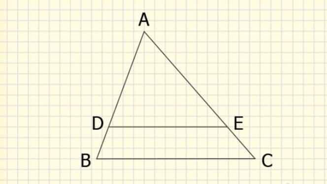 Teorema lui Thales. O înveți ușor și repede. Nu e deloc grea!
