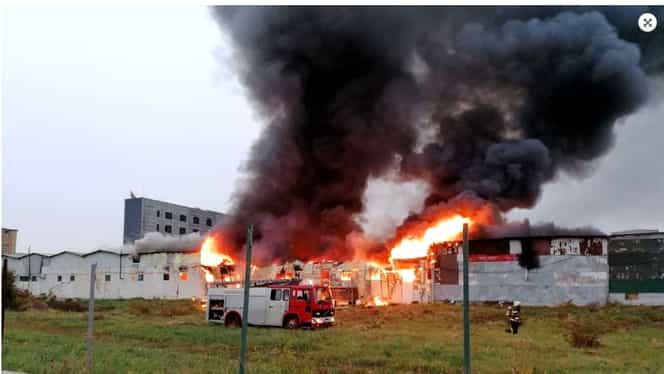 Incendiu într-un depozit din Florești, la intrarea în Cluj-Napoca. Pompierii s-au luptat cu flăcările timp de 2 ore și jumătate. Video Update