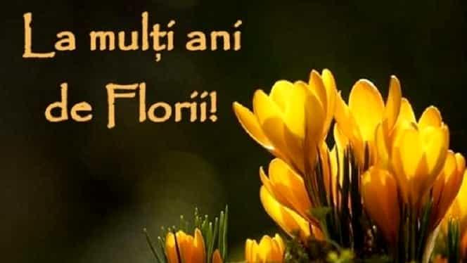 Cele mai frumoase și… haioase mesaje, sms-uri și felicitări de Florii