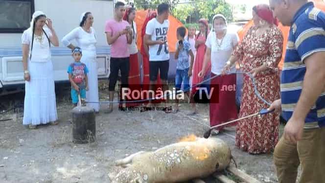Imagini incredibile în Mamaia. Au tăiat porcul pe plajă