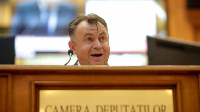 Nelu Tătaru, somat să demisioneze. Moțiune simplă împotriva ministrului, dezbătută în Camera Deputaților. Video