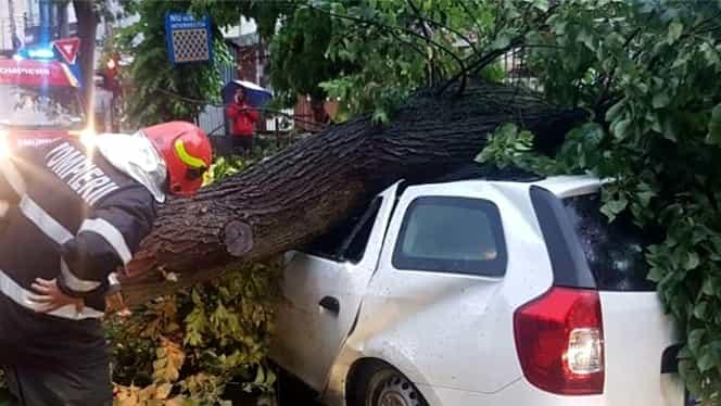 Furtună de proporţii în București. VIDEO. Doi răniţi şi copaci căzuţi peste o maşină