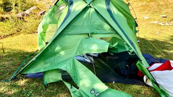 O ursoaică a distrus un cort în Munții Bucegi! Proprietarul a filmat totul. Video