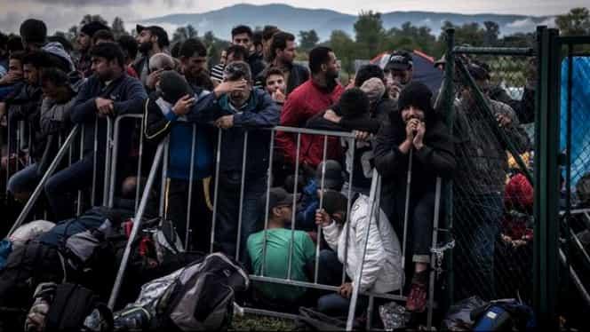 Cîţi imigranţi au ajuns în Europa în acest an?