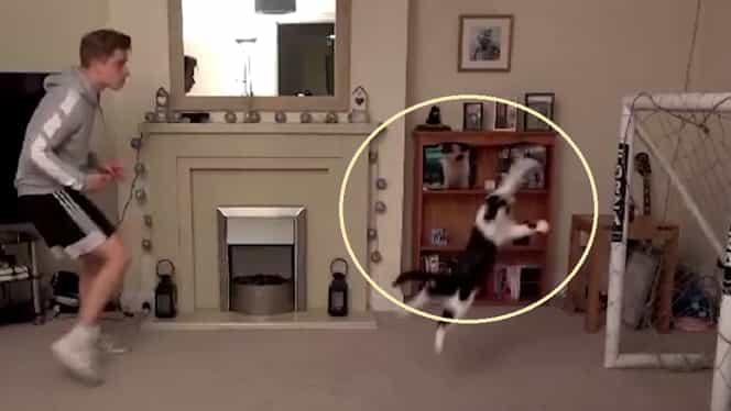O pisică apără mai bine decât mulți portari! Videoclipul cu Meownel Neuer face înconjurul lumii 😆