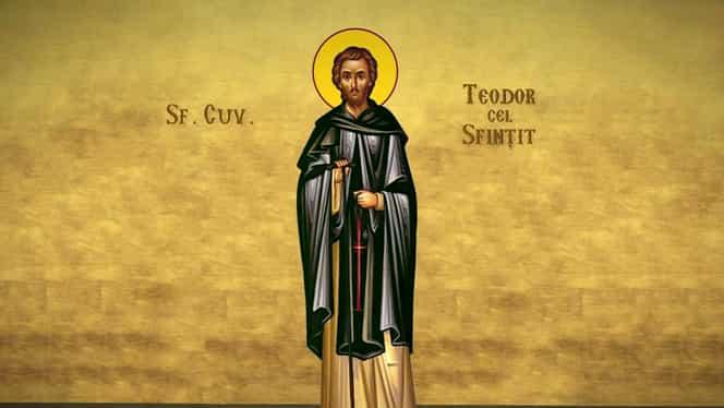 Calendarul ortodox, 16 mai. Este prăznuit Sfântul Cuvios Teodor cel Sfințit