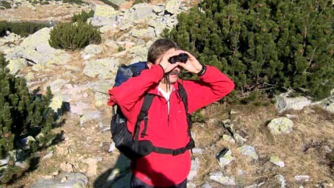 Operaţiune de salvare dificilă în munţi! Un turist a căzut pe un perete stîncos