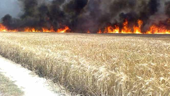"""Alertă de tip """"cod roşu"""" în Bulgaria: Risc major de incendii în zona litoralului"""