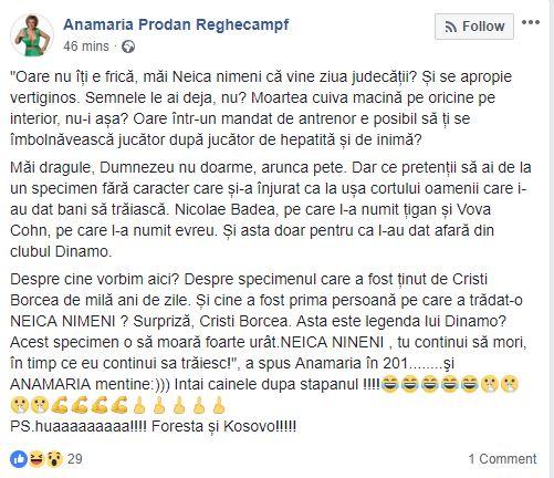 Scandal uriaş între Cornel Dinu şi Anamaria Prodan. Mesajul postat pe Facebook de agenta de jucători după ce a fost criticată de Cornel Dinu. Prodanca îl face praf pe dinamovist pe Facebook