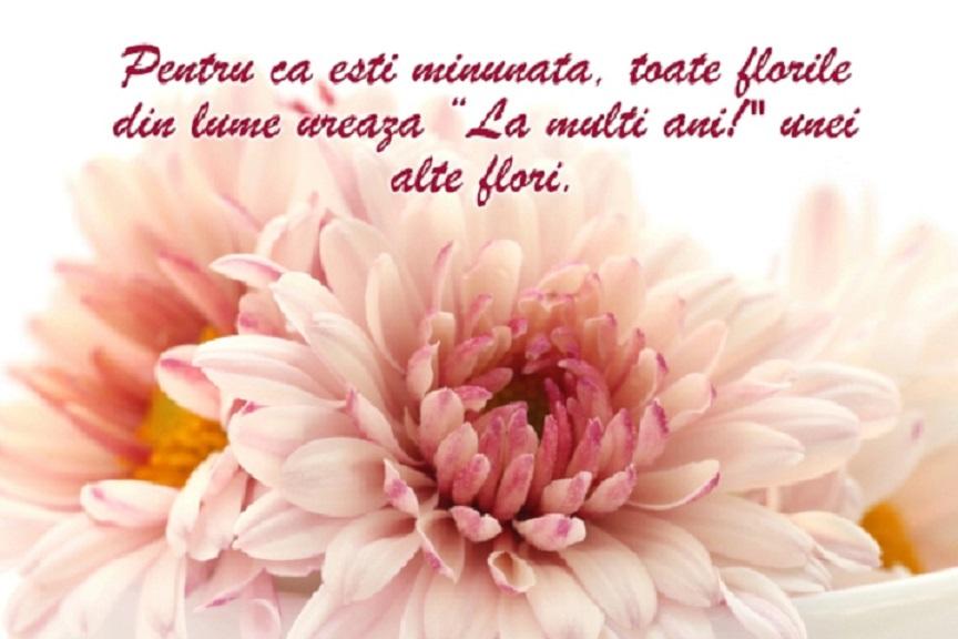 Nu uita de Florii să trimiți un mesaj de iubire persoanelor cu nume de flori din viața ta! Alege dintre mesajele, sms-urile și felicitările de aici!
