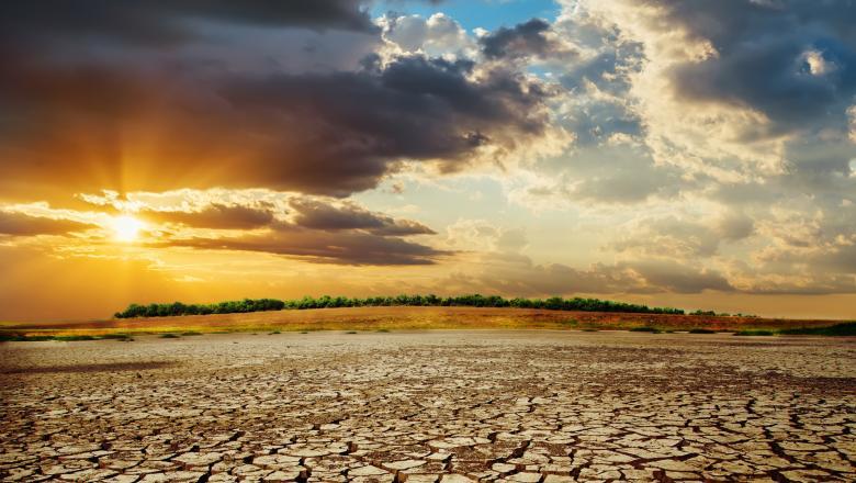 Kuweitul este lovit de un val de caniculă, temperaturile ajungând până la 63 de grade Celsius la soare. Sursa foto: Getty Images
