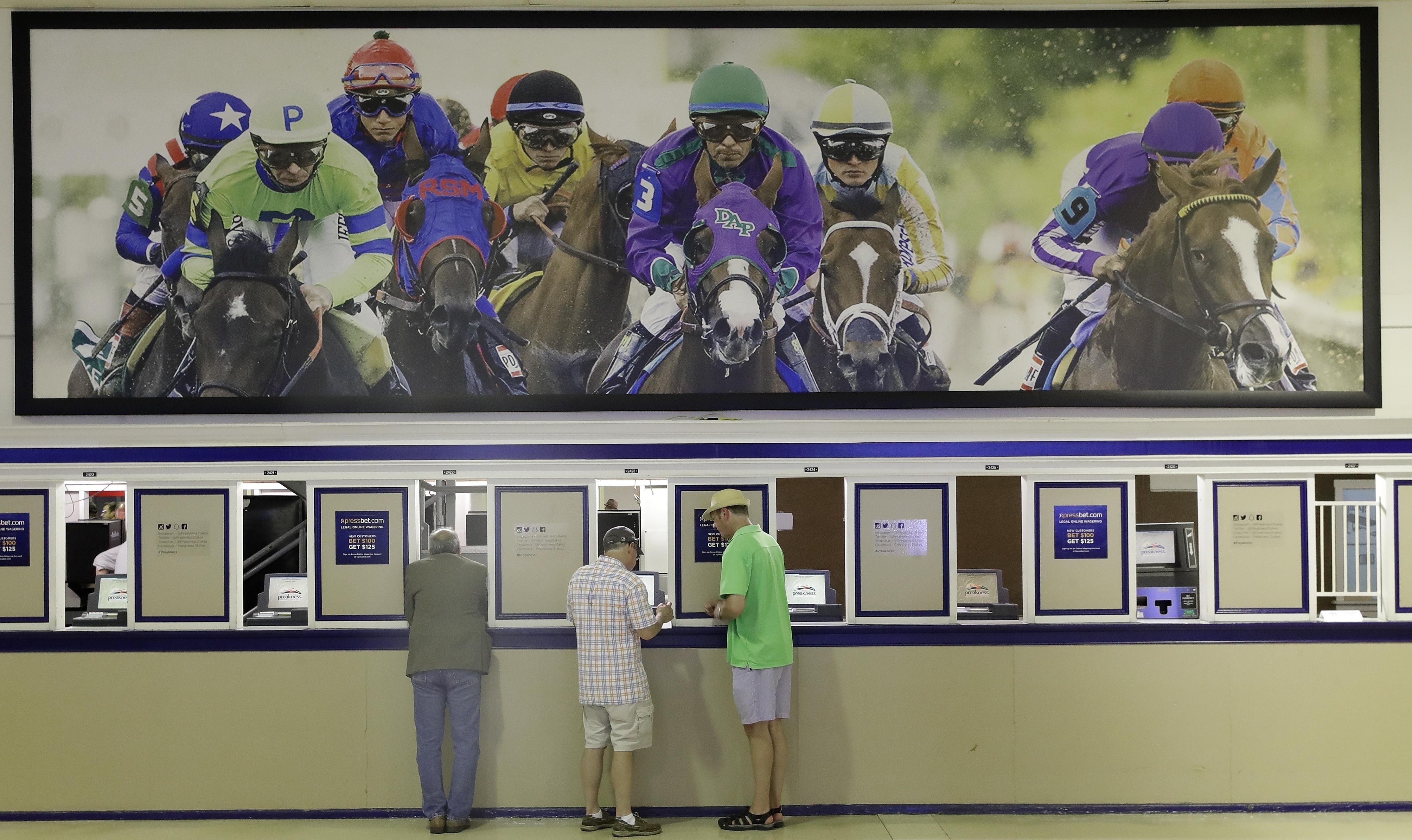 Regii pariurilor și programul-minune care învinge hazardul