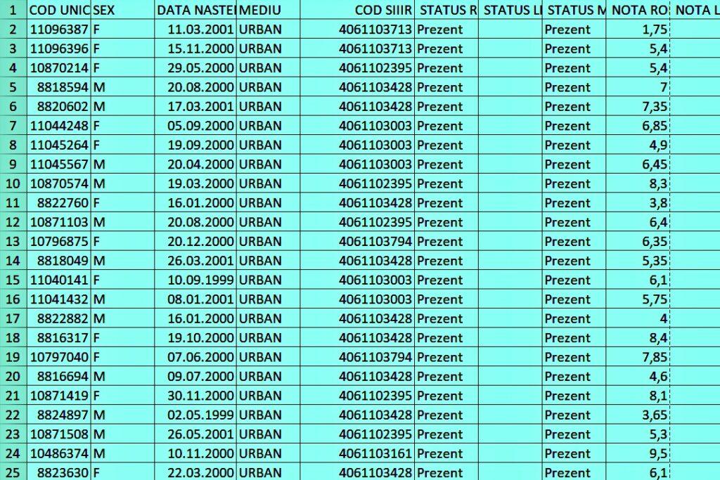 Așa vor arăta listele cu notele obținut la Evaluarea Națională. Codurile corespund numelor candidaților. Sursa foto: edupedu.ro